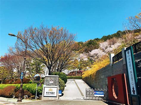 busan archaeology bokcheon museum zanne xannes travel guide zanne xanne