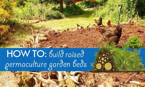 How To Build Raised Permaculture Garden