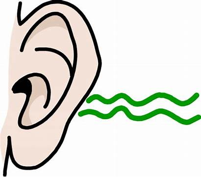 Sound Clipart Clip Ears Library Listening Cliparts