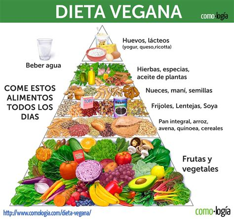 alimento vegano dieta vegana adelgazar r 225 pido barato y saludablemente