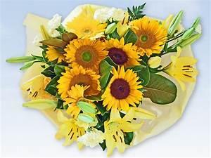Bilder Von Blumenstrauß : blumen strauss bilder news infos aus dem web ~ Buech-reservation.com Haus und Dekorationen