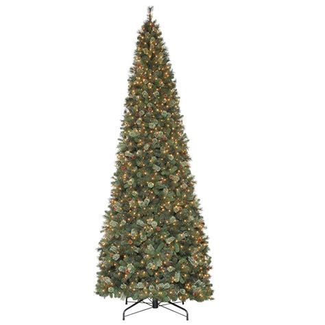 martha stewart living 15 ft alexander pine quick set