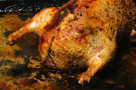 comment cuisiner un canard entier cuisiner un canard entier 28 images food box les