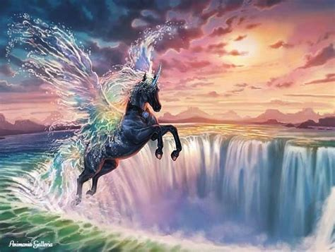 pegasus unicorns  pegasus unicorn unicorn