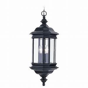 Sea gull lighting hill gate light outdoor black hanging