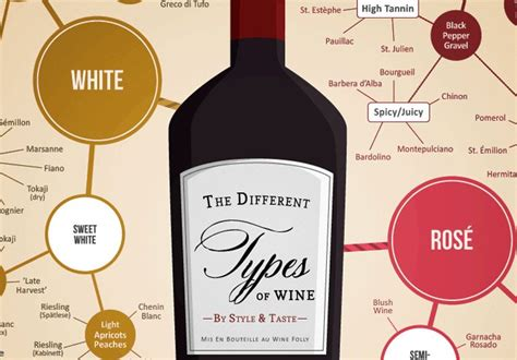 wine types best 20 types of wine ideas on pinterest wine types wine chart and wine guide