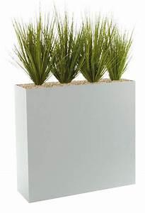plante et fleur d39interieur tous les fournisseurs With photo jardin avec palmier 14 plante et fleur dinterieur tous les fournisseurs
