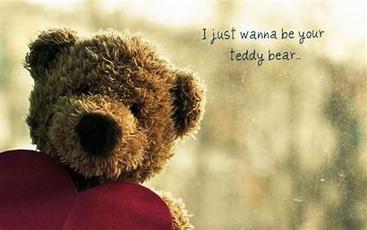 Funny Quotes Bear Teddy Relatable Wallpapers