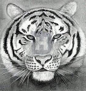 How To Draw A Tiger Head  Step By Step  Drawing Guide  By