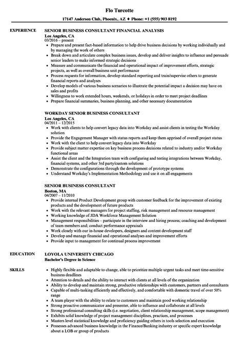 Business Consultant Resume by Senior Business Consultant Resume Sles Velvet