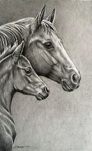 Original Pencil Drawing Horse