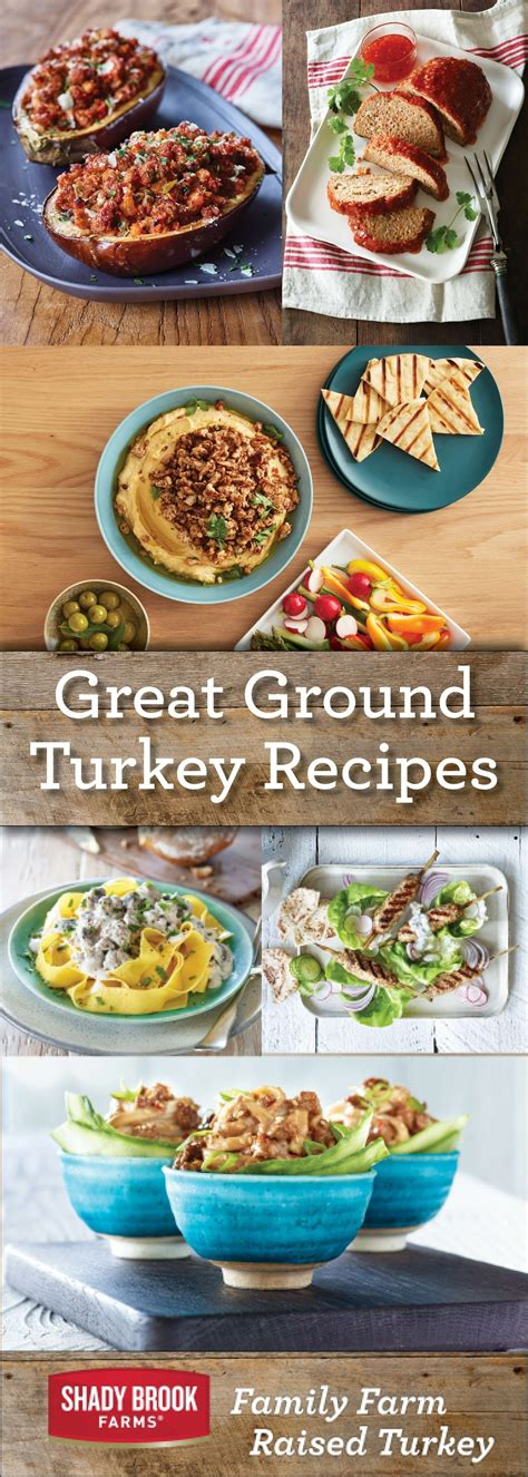 Meanwhile, in prepared skillet over medium heat, cook turkey until no longer pink, stirring occasionally. Ground Turkey Recipes - Shady Brook Farms® turkey | Ground turkey recipes