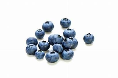 Blueberries Berries Healthy Ie Mighty Single