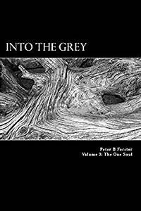 Into The Grey (The One Soul Book 3) (English Edition) eBook Peter B Forster Amazon  br