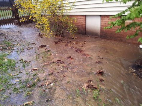 landscaping astounding drainage ditch landscaping ideas
