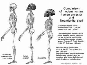 123 best Root race red neanderthal, thule images on ...
