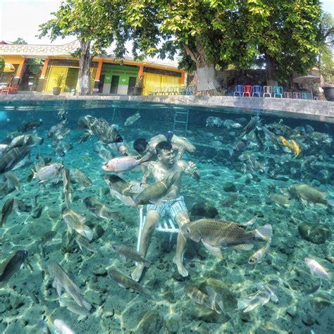 selfie bersama ikan  umbul ponggok klaten reservasi