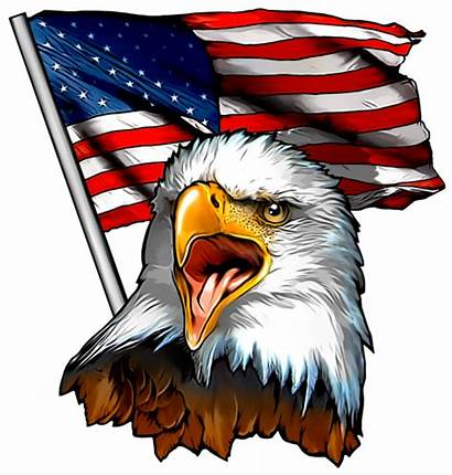 Eagle Flag American Patriotic Fabric Clipart Bald