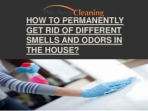 how to permanently get rid of different smells and odors With how to get rid of odors in house