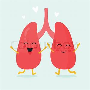 Cute Lungs Organs Characters  Anatomy Concept