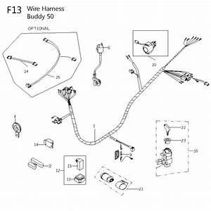 50cc Scooter Headlight Wiring  U2022 Wiring And Engine Diagram
