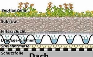 Extensive Dachbegrünung Aufbau : dachbegr nung anlage pflege und kosten extensive dachbegr nung dachbegr nungen und dachs ~ Whattoseeinmadrid.com Haus und Dekorationen