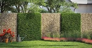 Gartengestaltung Einfach Und Günstig : gabionen ganz einfach selber bauen obi gartenplaner ~ Markanthonyermac.com Haus und Dekorationen