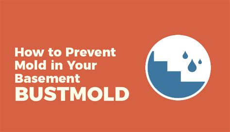how to prevent mildew how to prevent mold in your basement mold busters