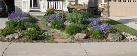 xeriscape landscaping ideas word of the day xeriscaping lu s news views