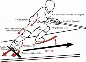 Stride Mechanics A Quick Hockey Development Starting Guide