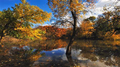 Download Nature Autumn Wallpaper 1920x1080  Wallpoper #319637