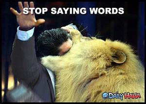 """[TMP] """"When a lion thinks you talk too much"""" Topic"""