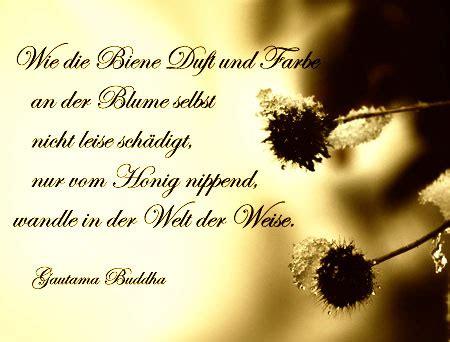 adventsgedanken zum  dezember sprueche und gedichte