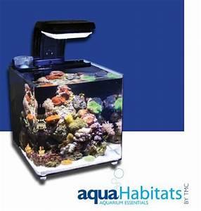 Tiere Für Aquarium : aquahabitat 30 ein nano meerwasser aquarium www ~ Lizthompson.info Haus und Dekorationen