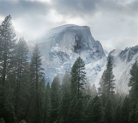 Mist, Nature, Landscape, Yosemite National Park, Trees
