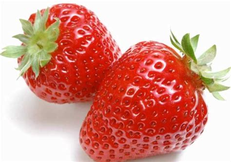 fruit that starts with the letter i can guinea pigs eat strawberries guinea pig