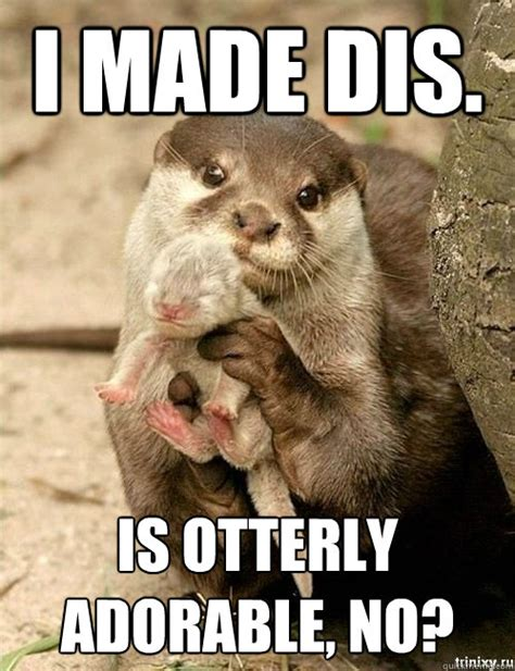 I Made Dis Meme - i made dis is otterly adorable no otter mom quickmeme