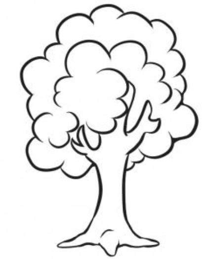 kumpulan mewarnai gambar sketsa pohon tanpa daun