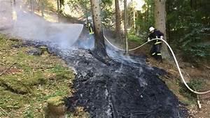 Spalt Zwischen Sockelleiste Und Boden : boden brennt in fichtenwald zwischen asel und basdorf v hl ~ Orissabook.com Haus und Dekorationen
