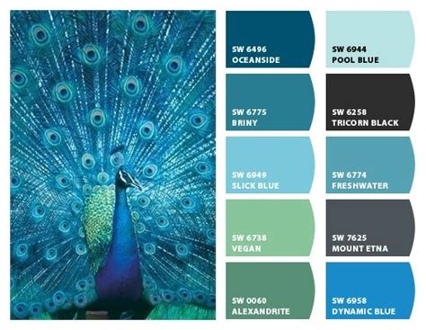 25 best ideas about peacock blue paint on