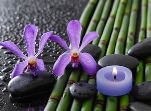 bamboo drops spa stones flower orchid HD wallpaper
