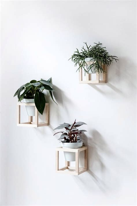 Pflanzen An Wand by Best 25 Wall Planters Ideas On Framed