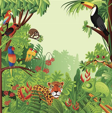 Rainforest Clipart Forest Clipart Tropical Rainforest Pencil And In Color