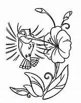 Hummingbird Coloring Pages Cartoon Drawing Flower Bird Hummingbirds Printable Humming Easy Drawings Cute Kidsplaycolor Cliparts Animal Getdrawings Designs Clip Adult sketch template