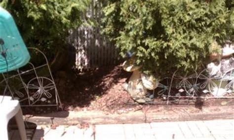 neighbor changed grade  flood  backyard