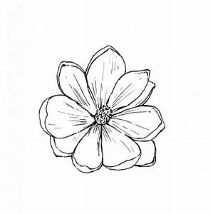 Flowers Reference Drawings Flower Drawing Reference Easy ...
