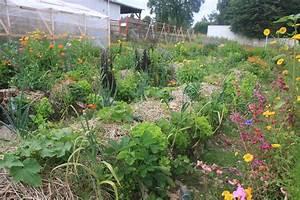 Plantes Amies Et Ennemies Au Potager : la permaculture une philosophie du soin de la nature la ~ Melissatoandfro.com Idées de Décoration