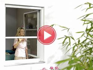 Viele Fliegen Am Fenster : rollo am fenster rollos fr kleine und groe fenster with rollo am fenster ingenious inspiration ~ Orissabook.com Haus und Dekorationen