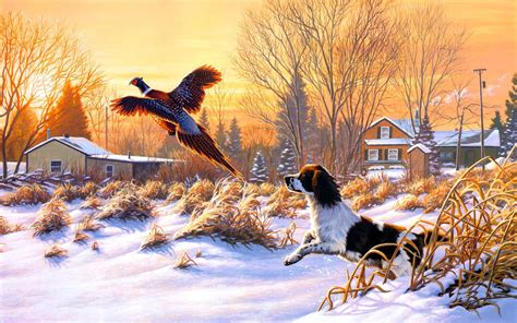 hunting backgrounds wallpapers images pictures
