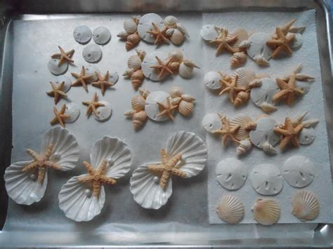 Decorating Ideas Using Seashells by Seashell Projects Cake Decorating Ideas Project On